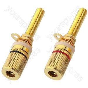 Binding Post - Pair Of Speaker Pole Terminals