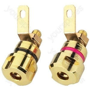 LS Screw Connector - Pair Of Speaker Pole Terminals