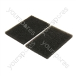 Electrolux Motor Filter - Pack of 2 (EF51)