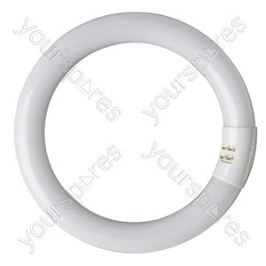 Eveready Circular Tube Triphosphor