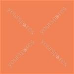 "Coloured Gel Sheet 48""x21"" - Colour Orange 105"