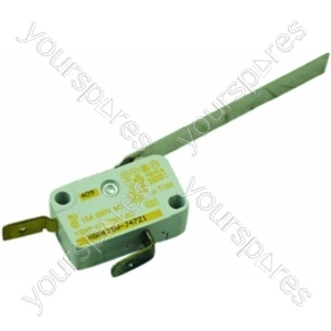 Indesit Microswitch