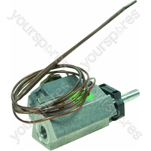 Thermostat (with Microswitch)