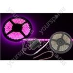 5m DIY LED tape kit - single colour IP65 - Pink - DIY-PK60