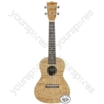 Native Series Ukuleles - Concert Curly Ash